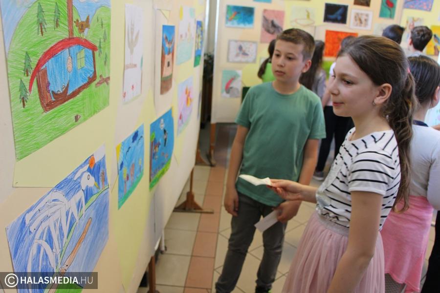 Zöld kiállítás díjazással