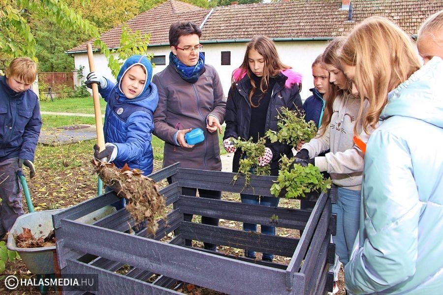 Fát ültettek, komposztálót építettek