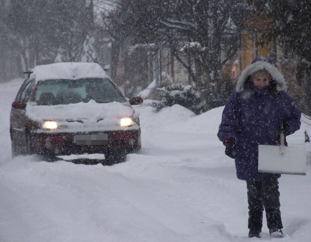 Hogy ne legyenek a télnek áldozatai