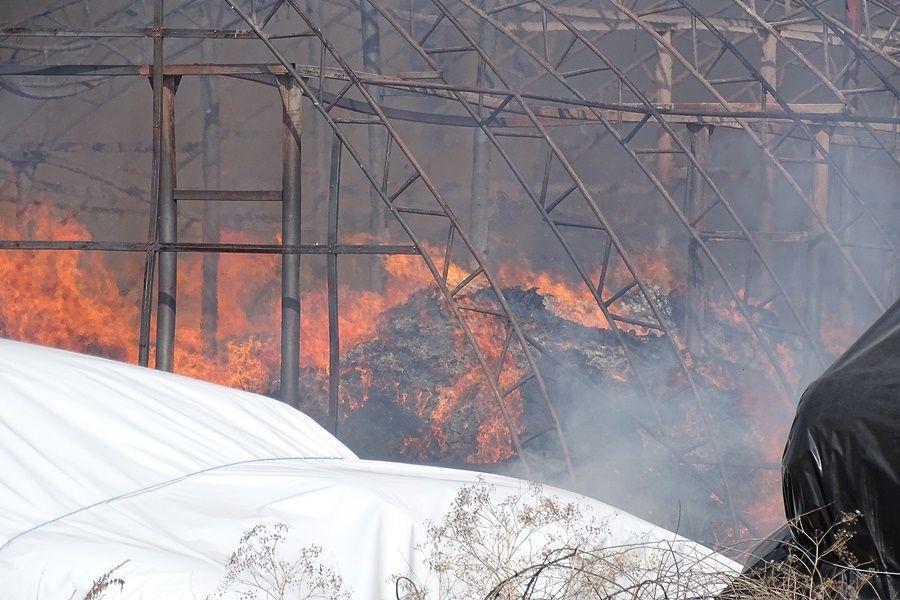 Halasi tűzoltók is oltják a lángoló félegyházi üzemcsarnokot