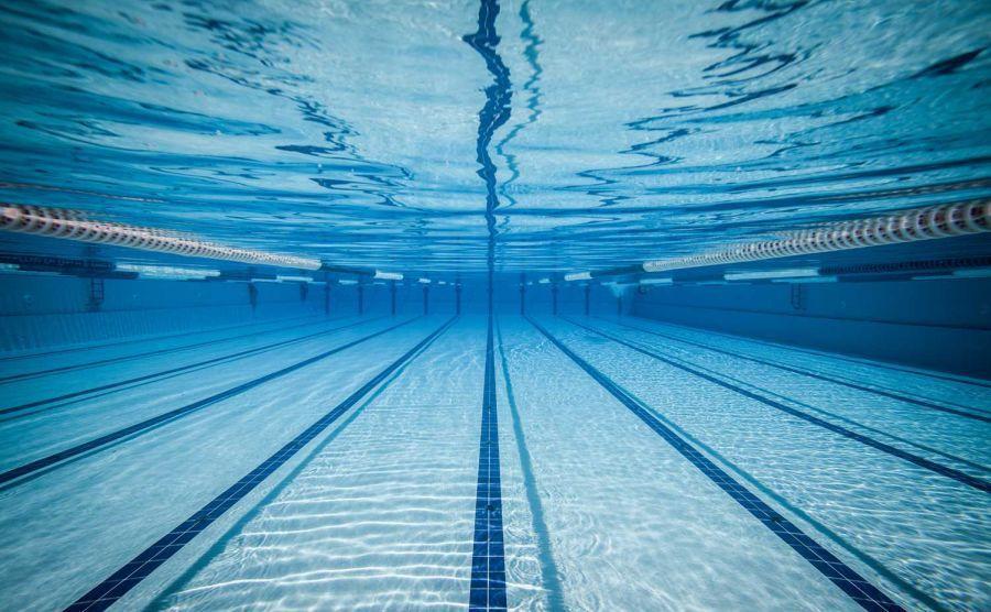 Remekeltek az úszóink a Naturtex Kupán
