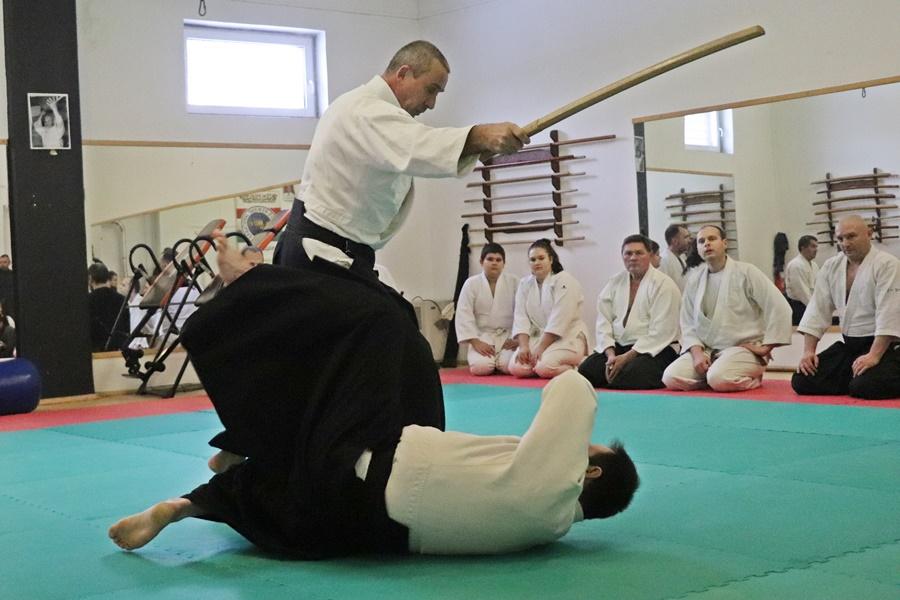 Keménység, fegyelem, aikido (galéria)