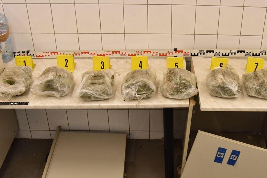 (►)31 milliós drogfogás Tompán