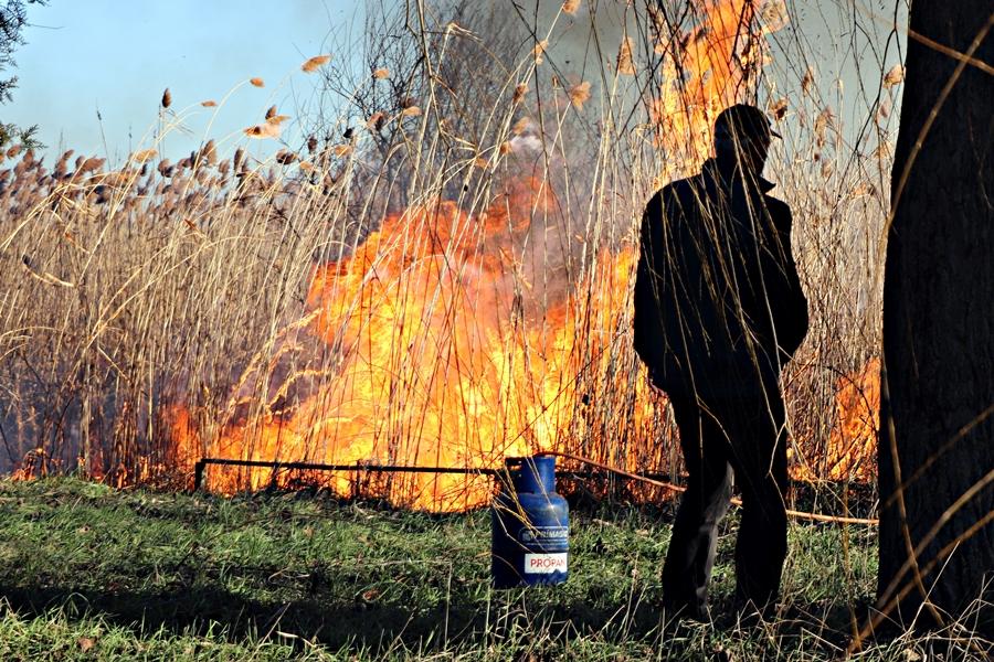 Óriási füst: irányított nádégetés Sóstón (galéria)