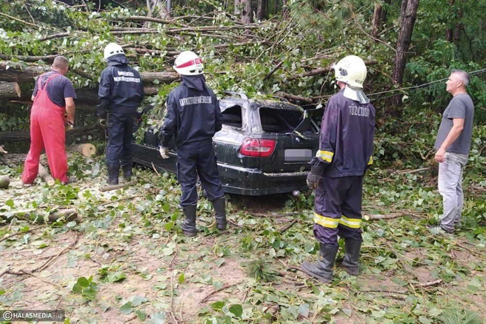 Halasiak, önkéntes mentőcsapatok segítettek a vihárkárok elhárításában (galéria)