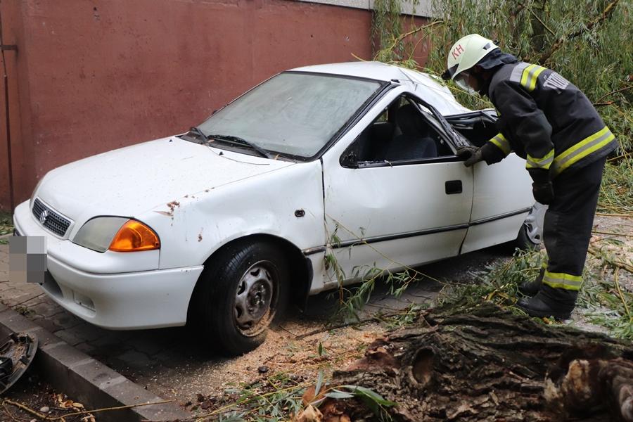 Összetört autók, letört ágak, kidőlt fák: a vihar Halason is pusztított (galéria)