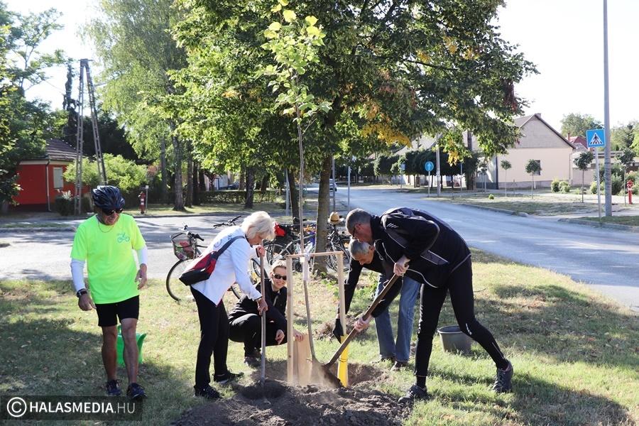 Fát ültettek Szabadka tiszteletére a halasi bringabarátok (galéria)