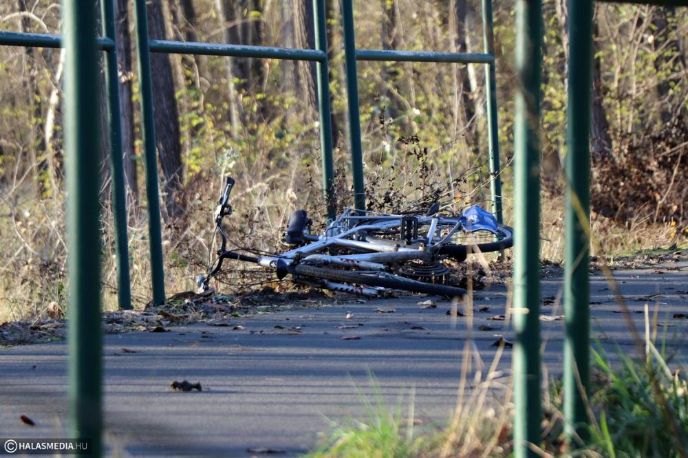 Meghalt egy halasi kerékpáros Pirtó közelében (galéria)