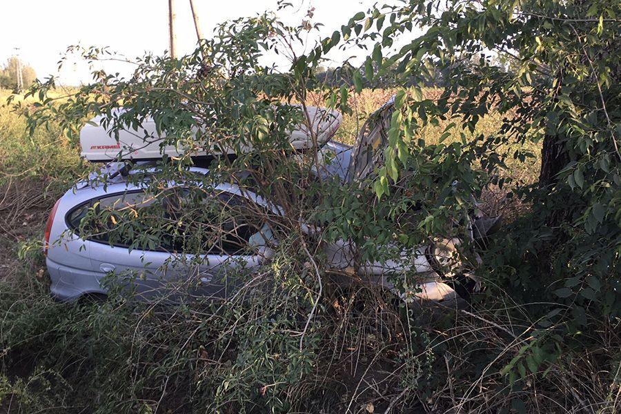 Fának ütközött egy autó a majsai úton (galéria)