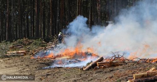 Öt vízsugárral oltották a tüzet