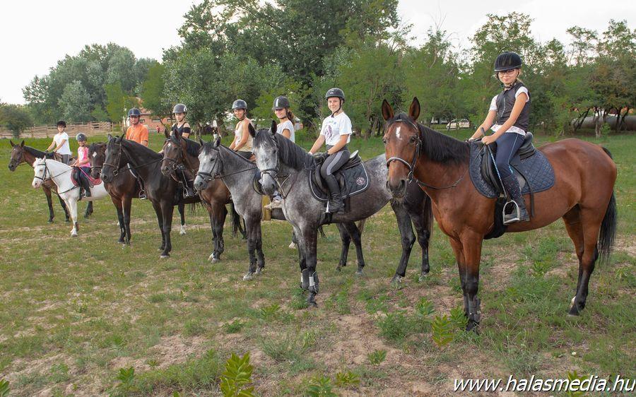 Népszerű a lovas tábor Pirtón