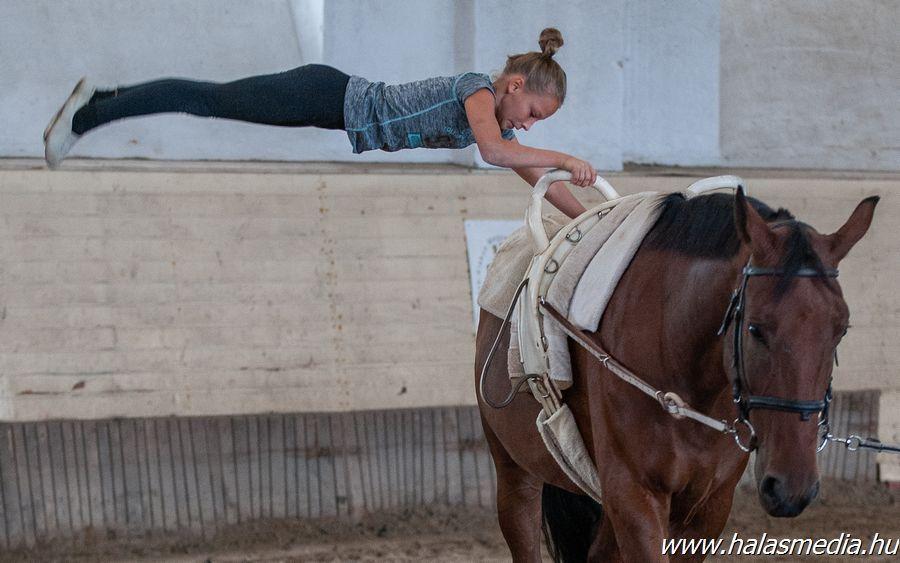Rajtvizsgára, versenyre készülő lovasok (galéria)