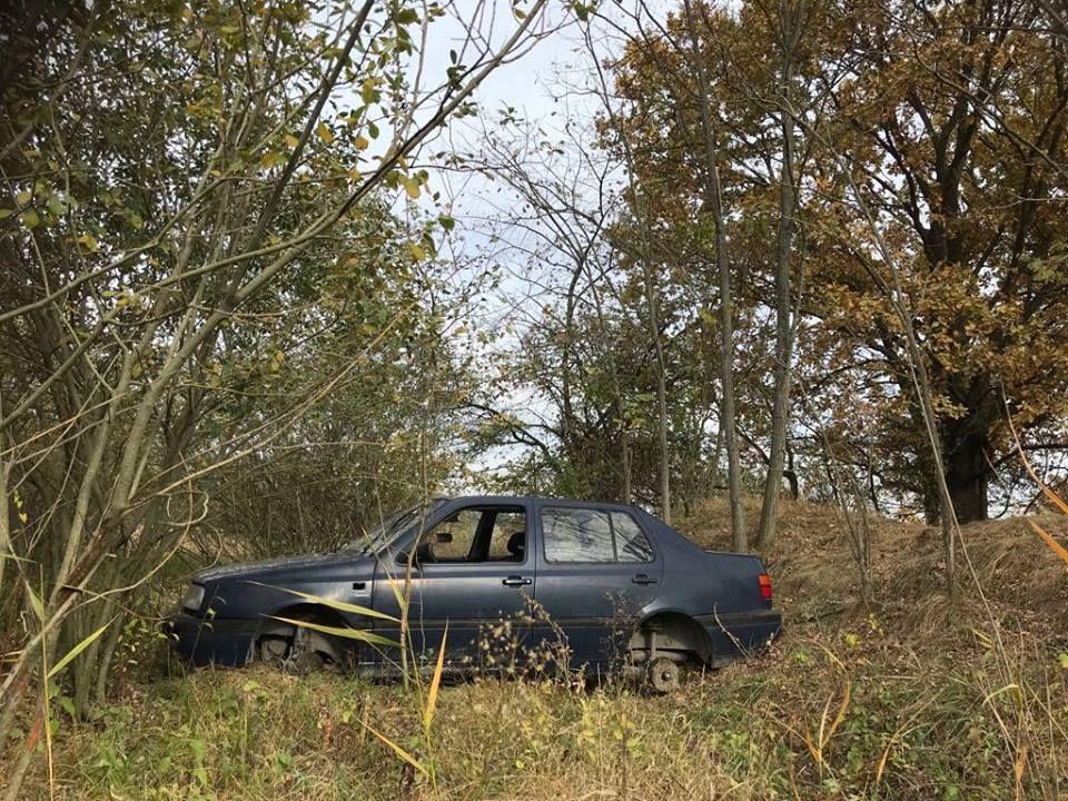 Autóroncs a parkerdőben