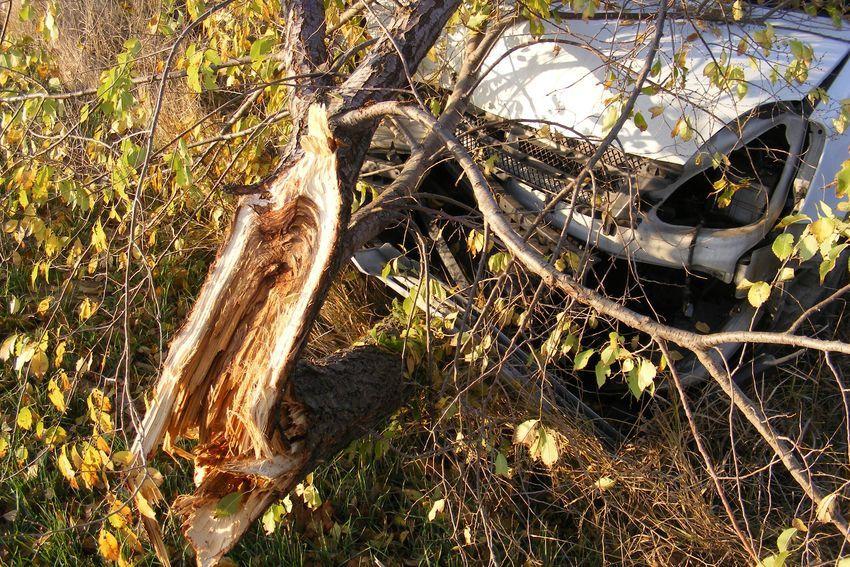 Árokba hajtott, fának csapódott