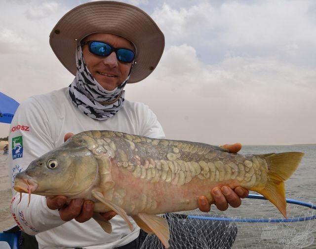 Válogatott halasi Dél-Afrikában