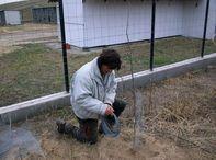 Téli famentés az állatvédőknél