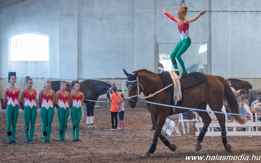Lovastorna és szabadidős versenyek a lovasparkban (galéria)