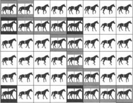 (►) A lovak jármódját kutatták
