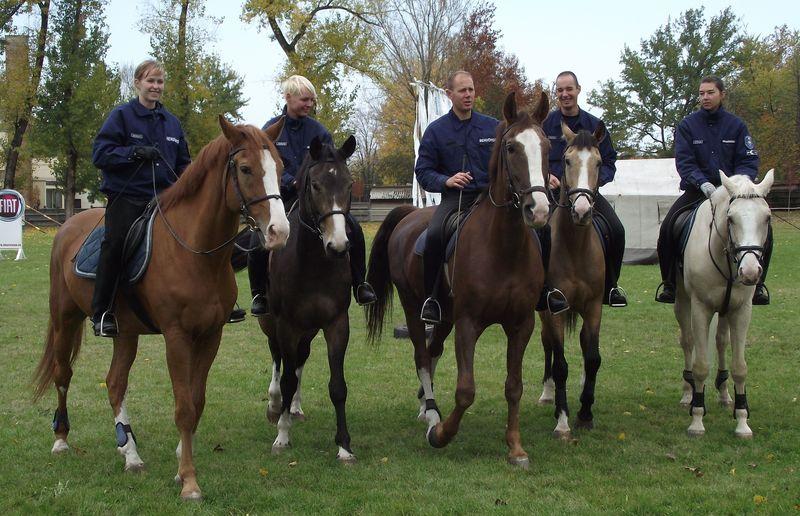 Hazajárnak Halasra a lovas rendőrök
