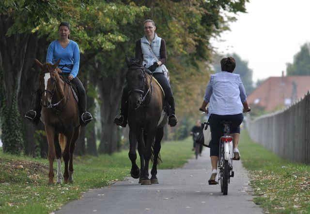 Lovas csúcsforgalom a kerékpárúton