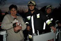 Tűzoltók mentették meg Dolly-t a fáról