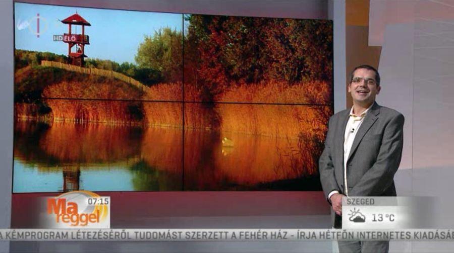 Halasi fotók az MTV műsorában