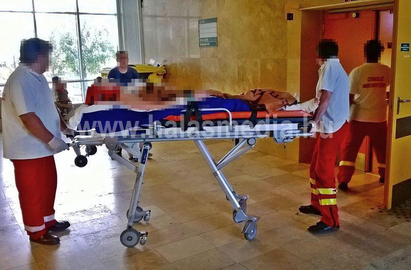 Megérkezett a halasi kórházba Norbi (friss fotóval)
