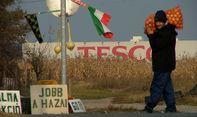 Halasi termelők is szállíthatnának a Tesconak?