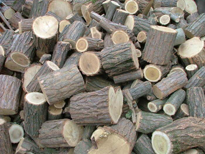 Tűzifa támogatás: Halas kimarad