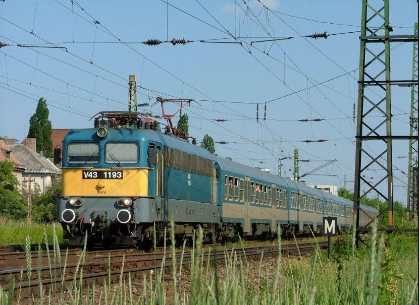 Kidőlt fa miatt késnek a vonatok