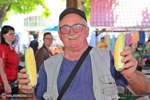 Ízletes kukoricát kínálnak a termelők