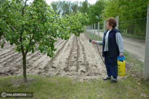 Segítenek kertészkedni