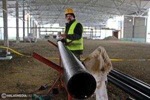 Jól halad a szárnyasvágóhíd építése (galéria)
