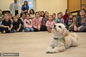 Terápiás kutyus járt a halasi kórházban