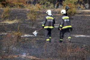 Négyhektárnyi avar égett Zsanánál