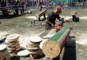 Halasiak a megyei tűzoltó favágóversenyen