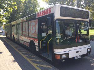 Ingyenes sóstói buszjárat augusztus 20-án