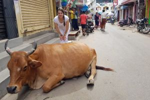 Különleges útiélmények Indiából és Sri Lankából