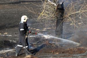 (►)Több mint 22 hektáron puszított a tűz Alsószálláson (galéria)