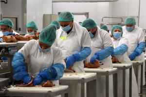 Munkaerőt keres a HunEnt kiskunhalasi gyára