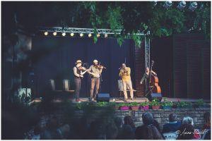 Folkest az Erdőfű zenekarral