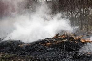 Jövő évtől tilos az avar és a kerti hulladék égetése