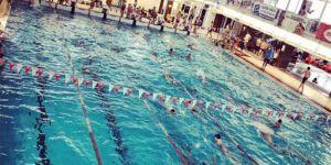 Halasi érmek a jubileumi úszóversenyen