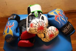 Halasiak bokszoltak Szegeden