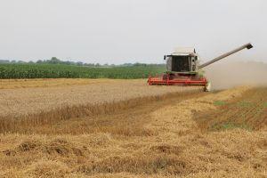 (►) Kisfilmekkel segíti a termelőket az agrárkamara