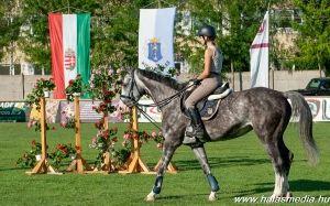 Championatus és családi programok a lovasparkban
