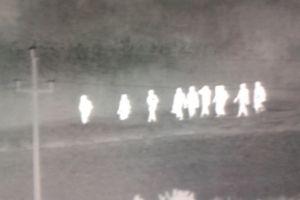 Újabb migránsokat fogtak