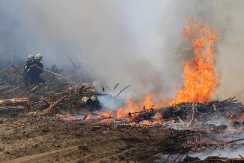 Mától tűzgyújtási tilalom van érvényben