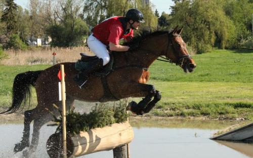 Hétvégi lovas sikerek