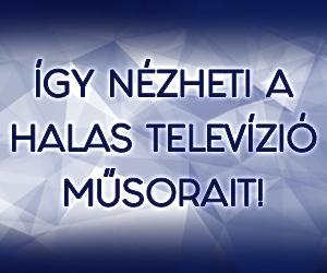 Így nézheti a Halas Televíziót!